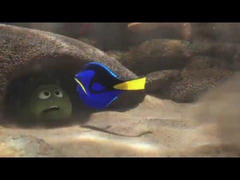 Buscando a Dory | Primer Tráiler Oficial | Disney · Pixar Oficial