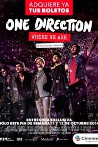 One-Direction-Concierto-2014